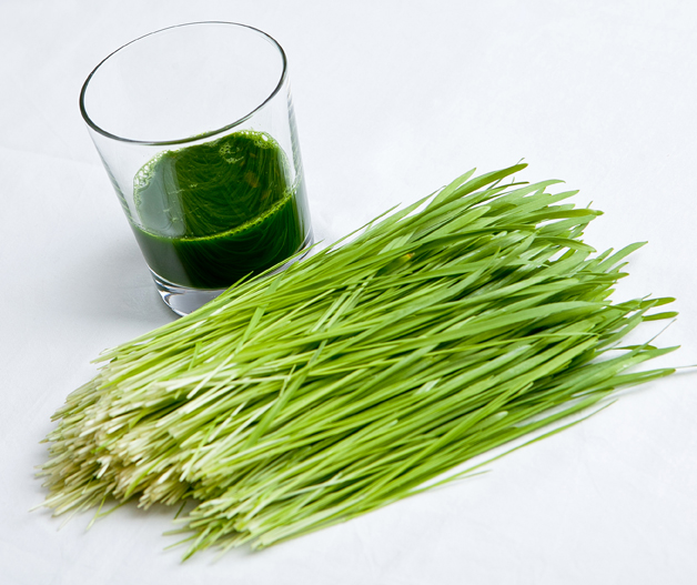 Hippocrates Photography – Wheatgrass & Juice