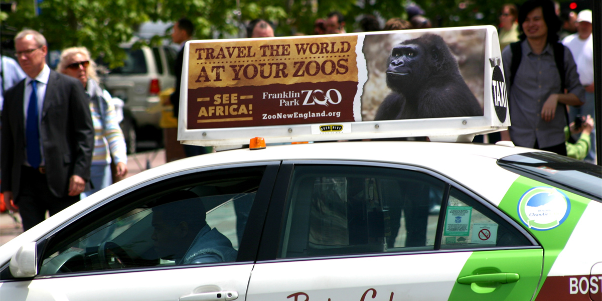 Zoo New England Travel The World Taxi Top Advertisement
